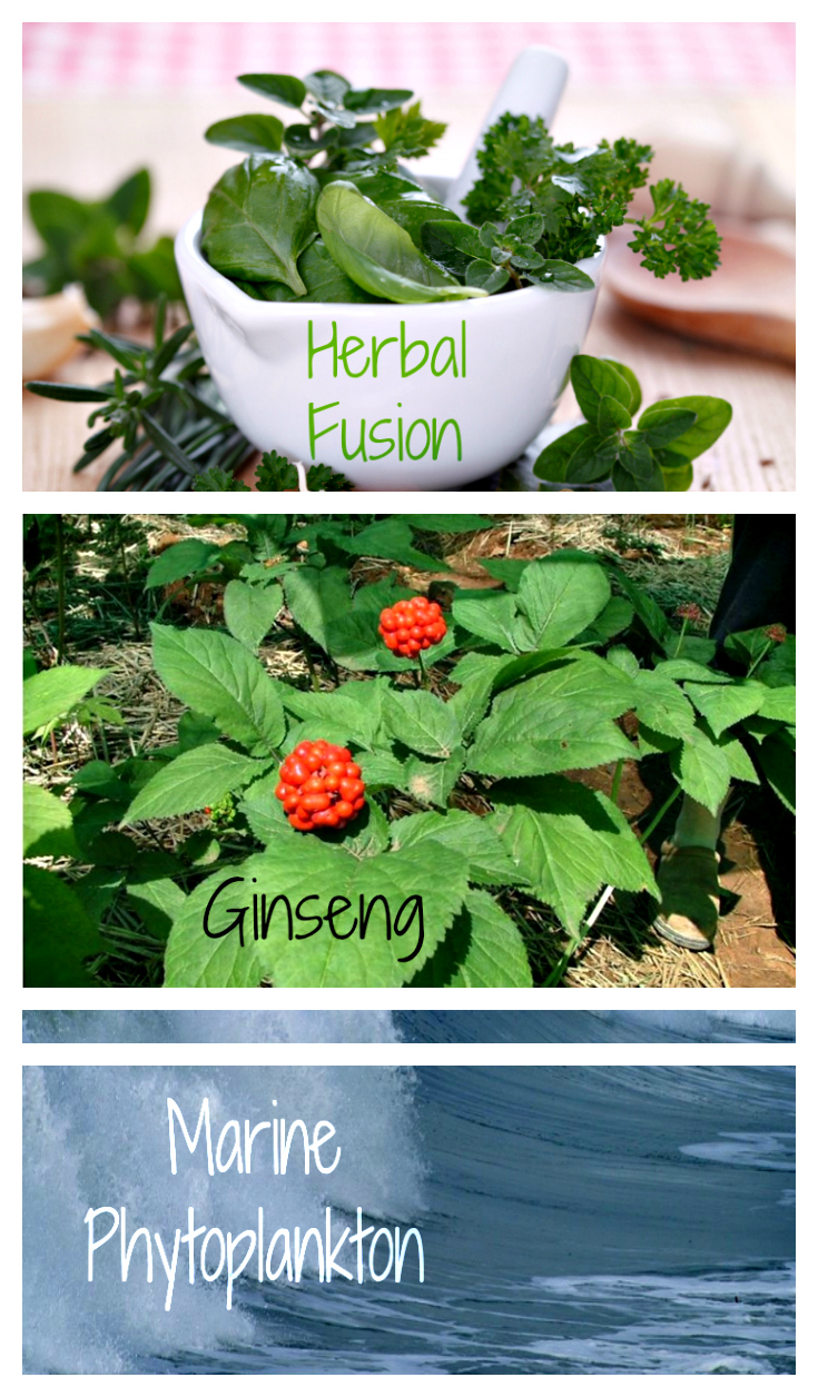 Herbal Fusion For Health